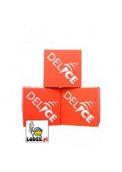 Lody Delice EXTRA Soft śmietankowo-waniliowe w proszku - 8 kg (4 x 2kg)